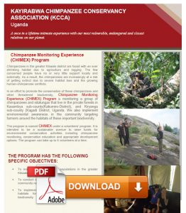 Download Chimpanzee Monitoring Experience PDF